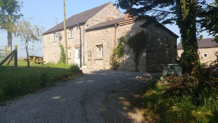 Chestnut house Armagh