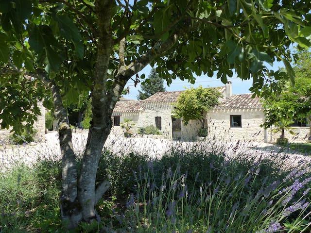 Un Mas du Quercy rénové avec goût. Porcherie - Cieurac - Guesthouse