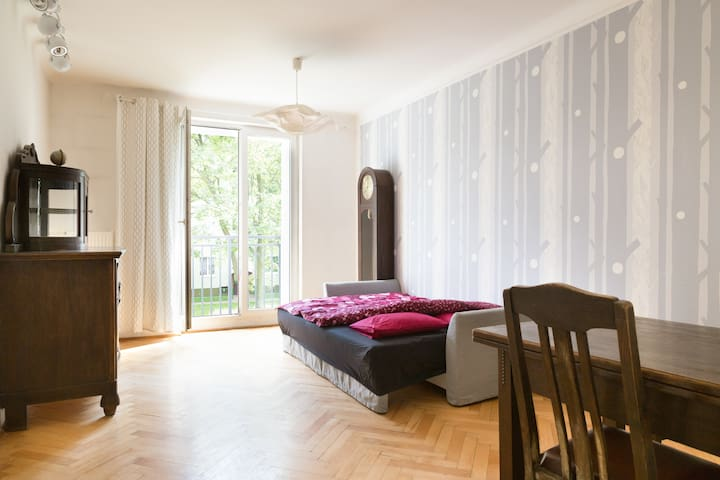 Spacious, bright, well located apartment - Warsaw - Apartment