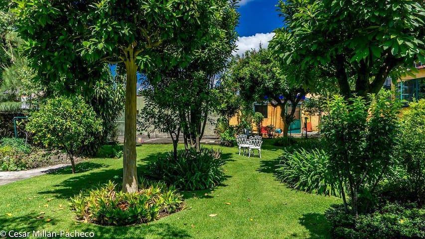 Casa Terranova - Cuernavaca - Haus