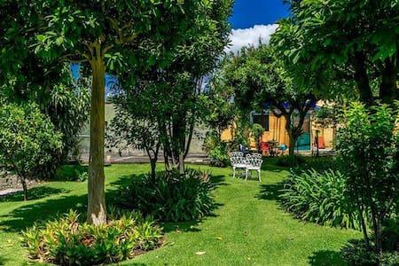 Casa Terranova - Cuernavaca