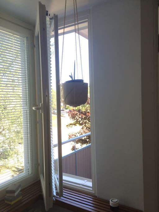 Clean air, small balcony!