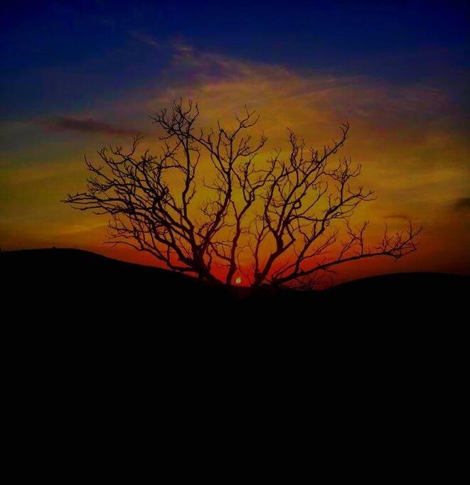 Beautiful Westlake Village Sunsets