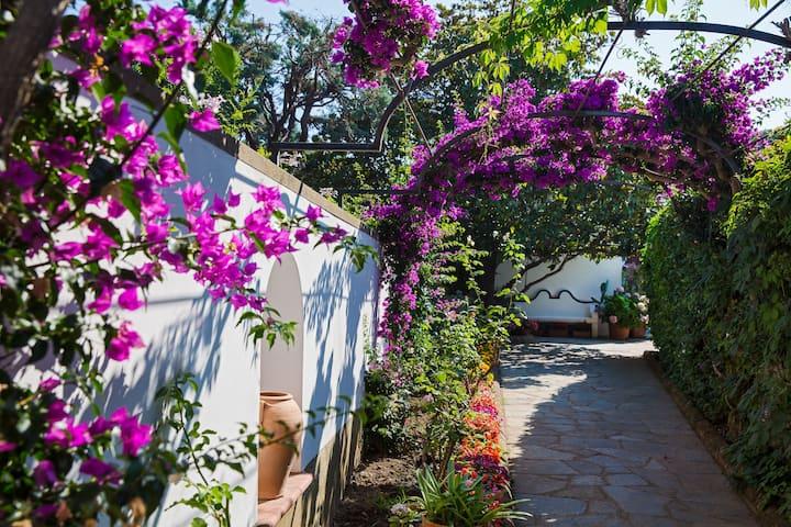• Silent Villa in Anacapri center •