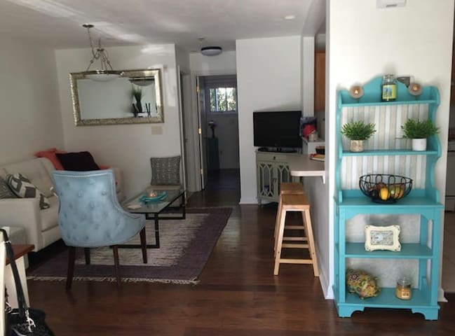 Arlington Center Condo - close to Cambridge/Boston