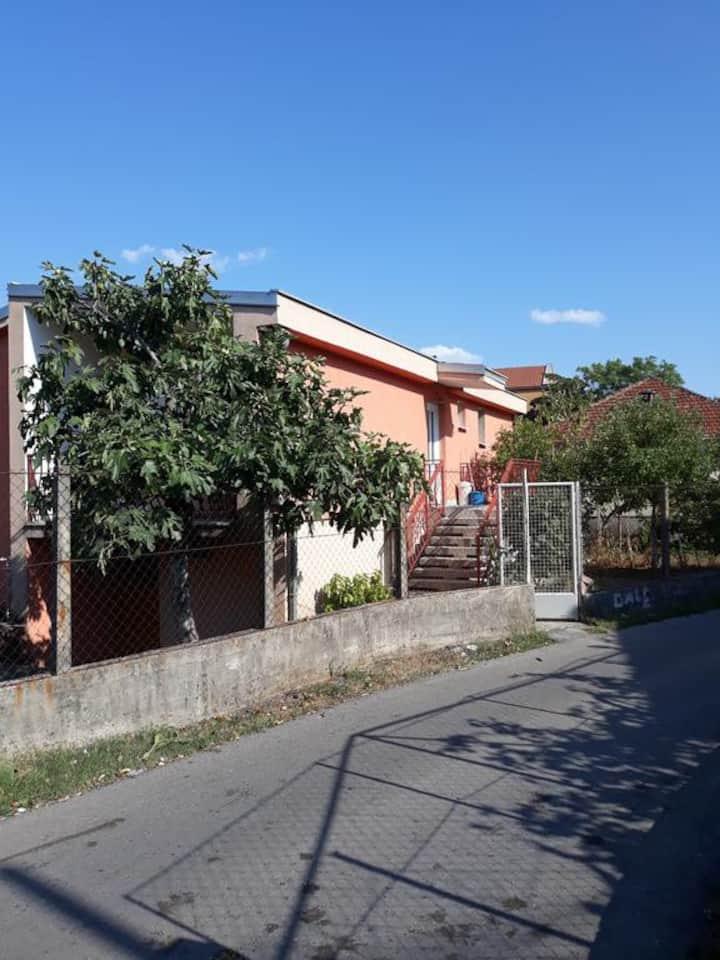 Apartment Lazar & Marco