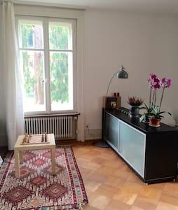 big bright Room near Bärengraben - Bern - Bed & Breakfast