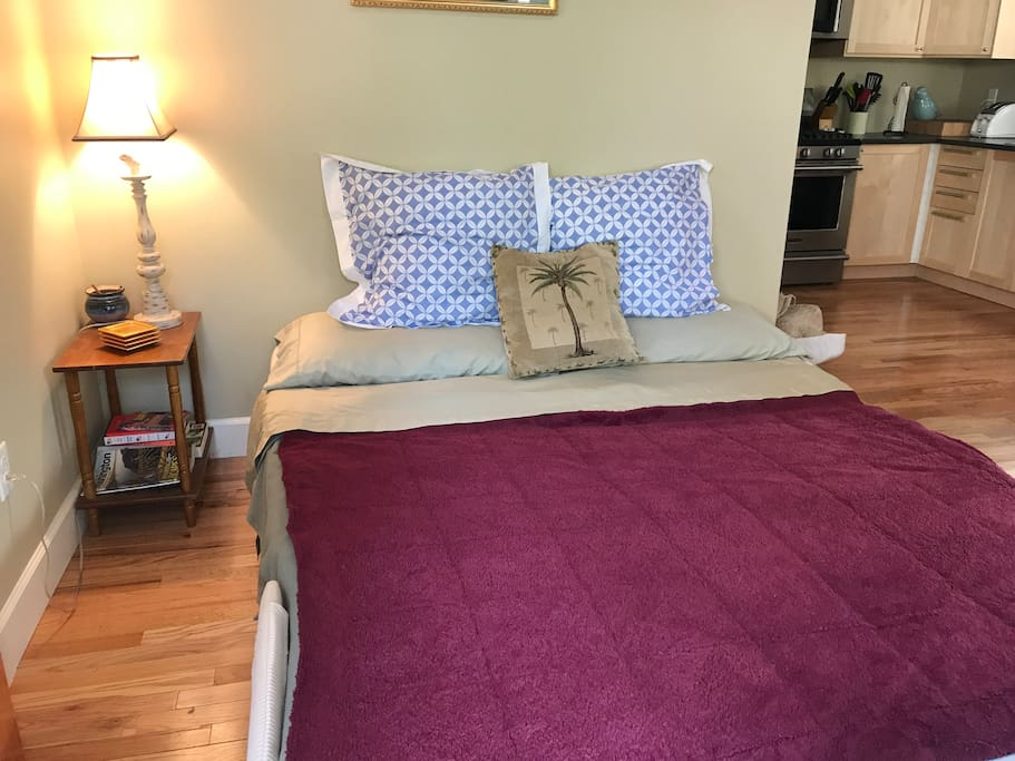Comfortable pull out queen couch/bed. No bar in the middle!