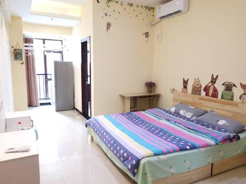 南三环嵩山路整套一居室,非常安静温馨舒适