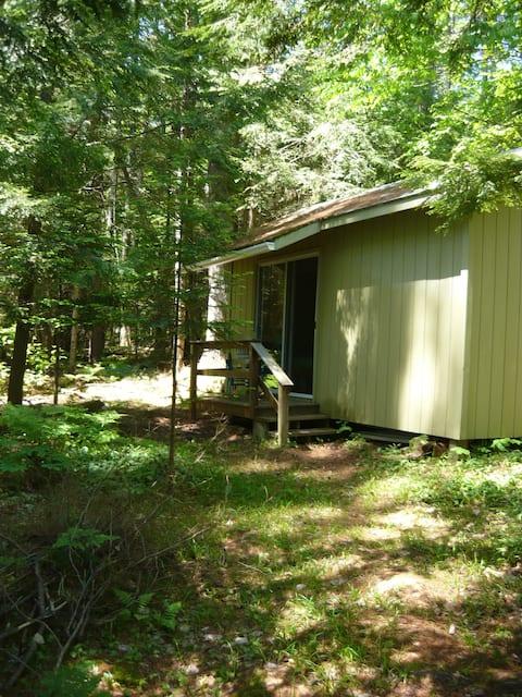 Rustic private guest cabin on Torsey Lake