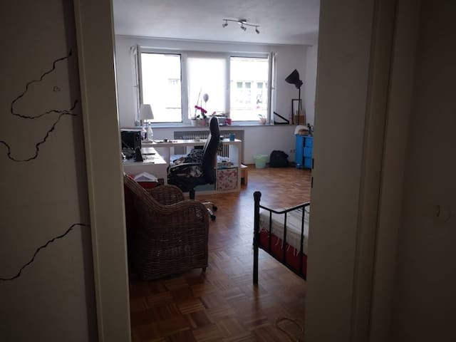 Studio Apartment in Aachen (45m2)