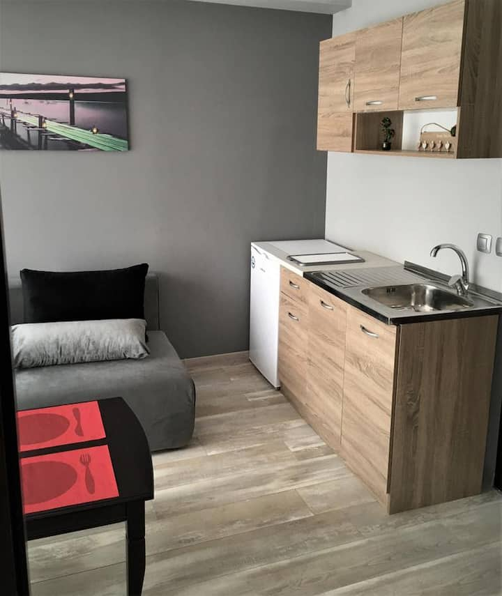 Alex Apartament