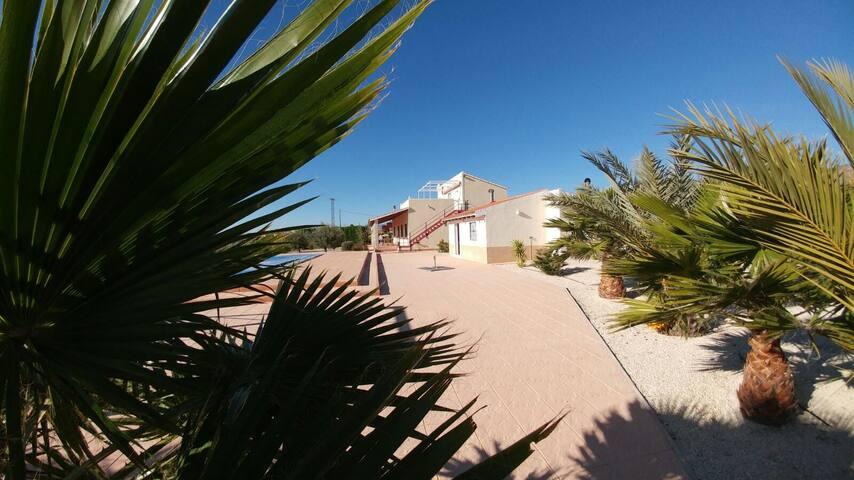 Relax studio met zwembad nabij Alicante