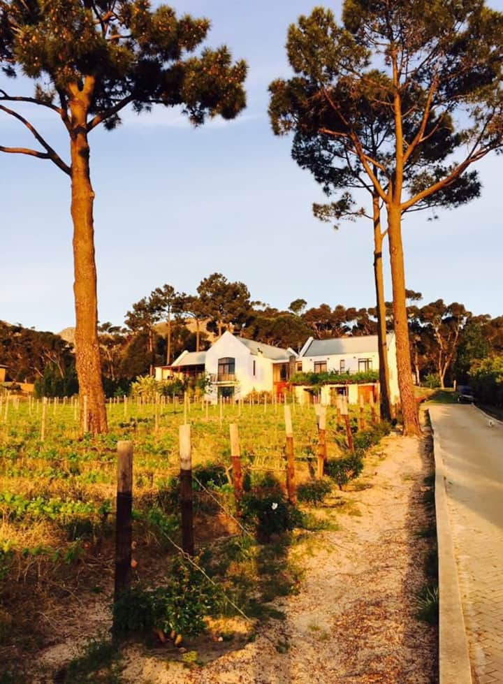 Cadequin Vineyard Cottage
