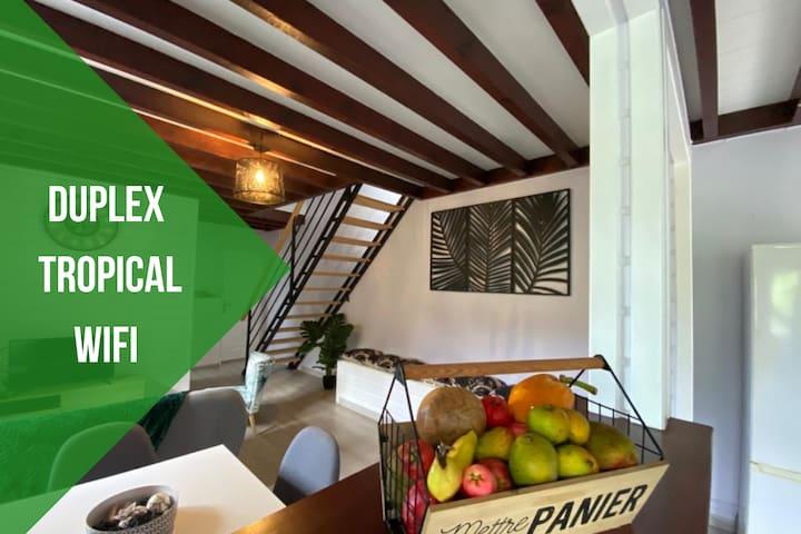 ! Duplex Tropical - Cosy - Centre Martinique !
