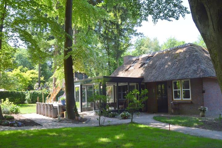 Beautiful Holiday Home in Haaren with Sauna