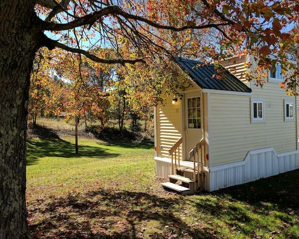 New River Tiny House # 10