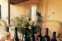 Tenute Pacelli wines offer