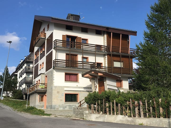 small flat in chalet 'alpino'