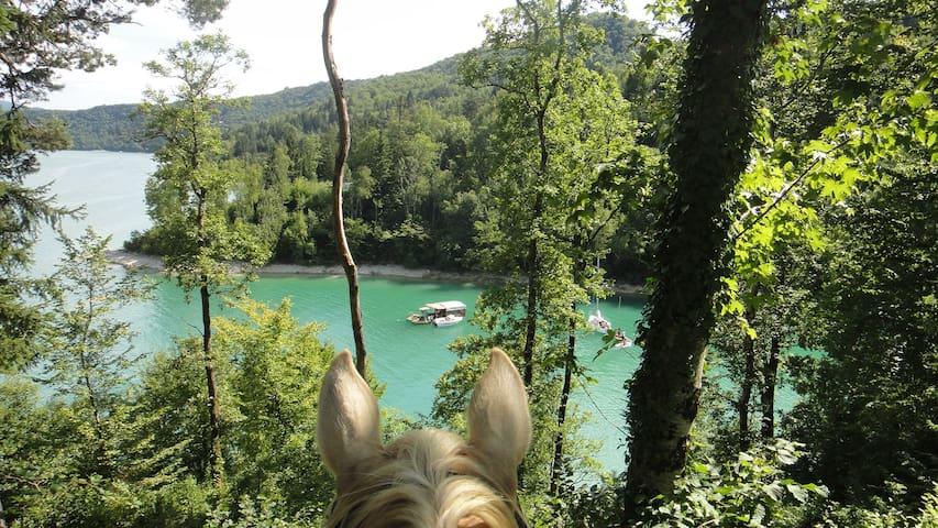 Lac de Vouglans à 30 min de la maison