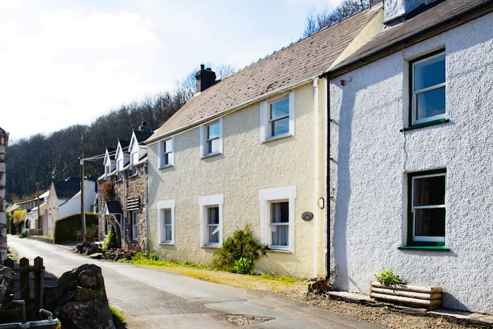 Fisherman's Cottage in the harbour village - Solva