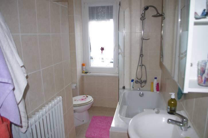 appartement T3 spacieux et lumineux - Pont-l'Abbé - Apartment