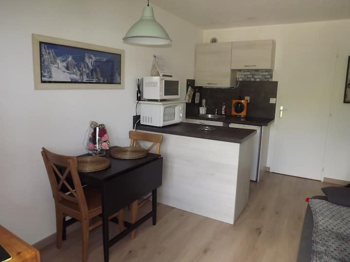 appartement chamrousse 4 personnes