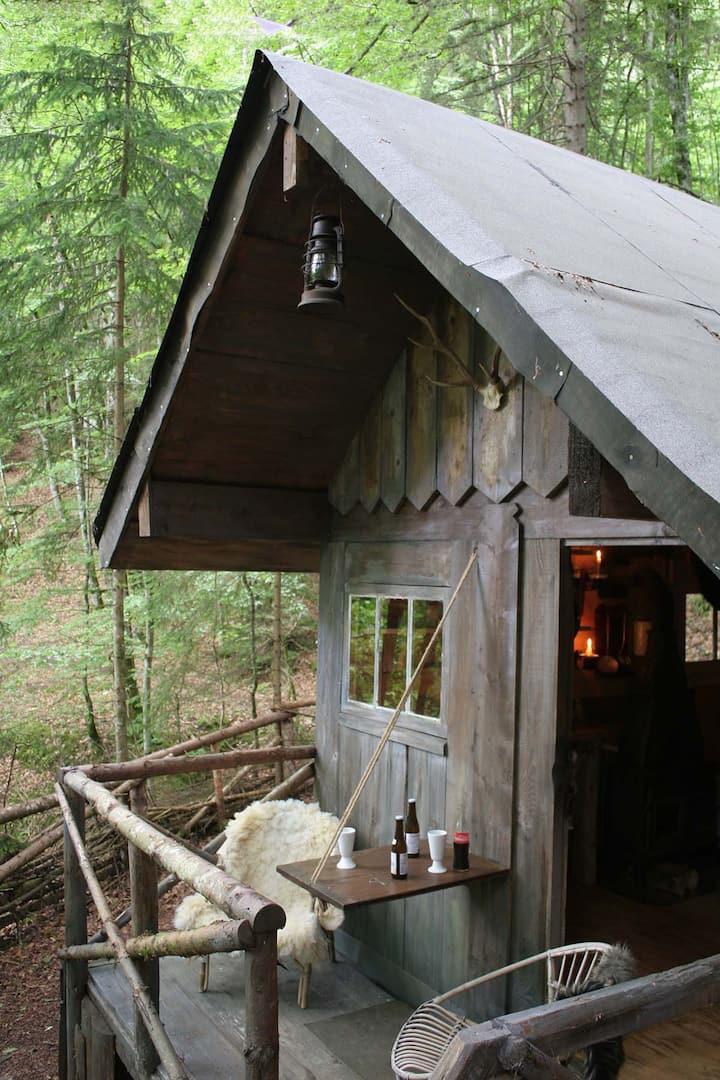 Cabane de trappeur depuis août 2020