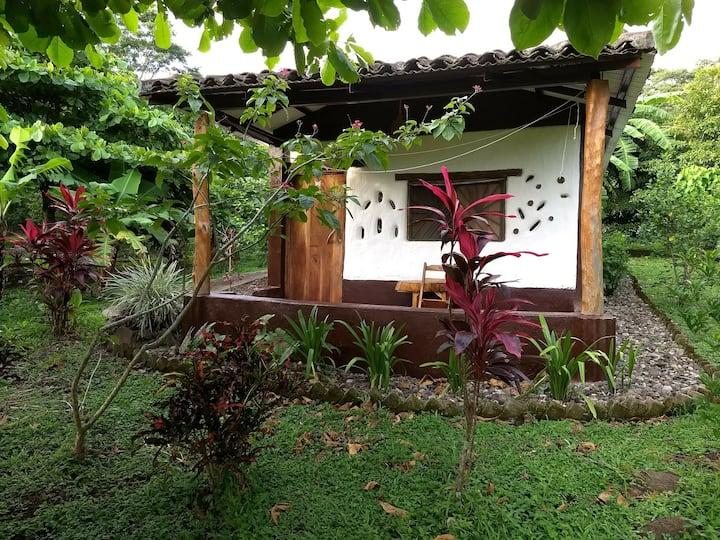 """Finca Mystica : Private Cob Cabin """" Casita Mono """""""