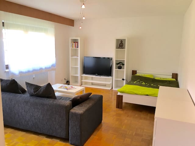 Center of Town, best Infrastructure and Connection - Erlangen - Apartment