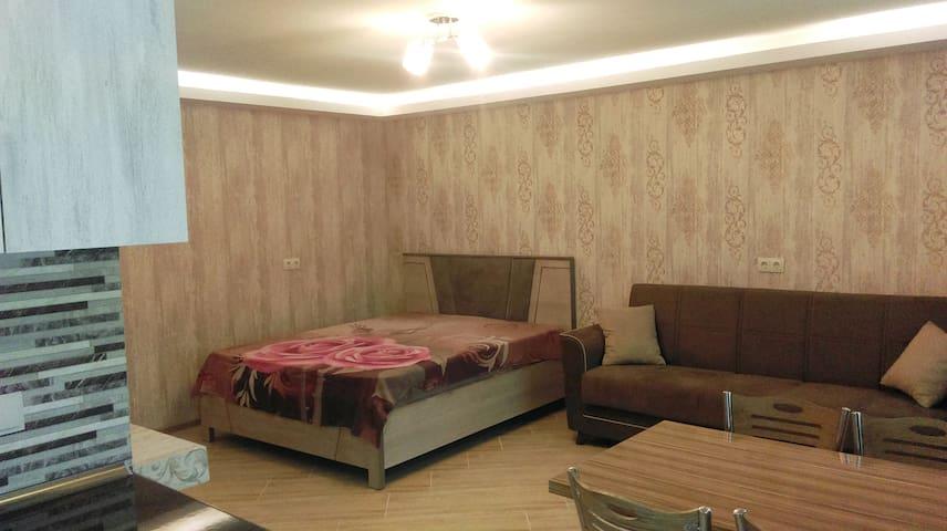 Квартира-студия, общий план / Studio apartment, general plan
