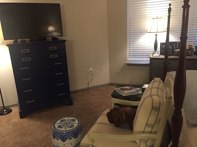 Charming studio in great area - Atlanta - Huoneisto