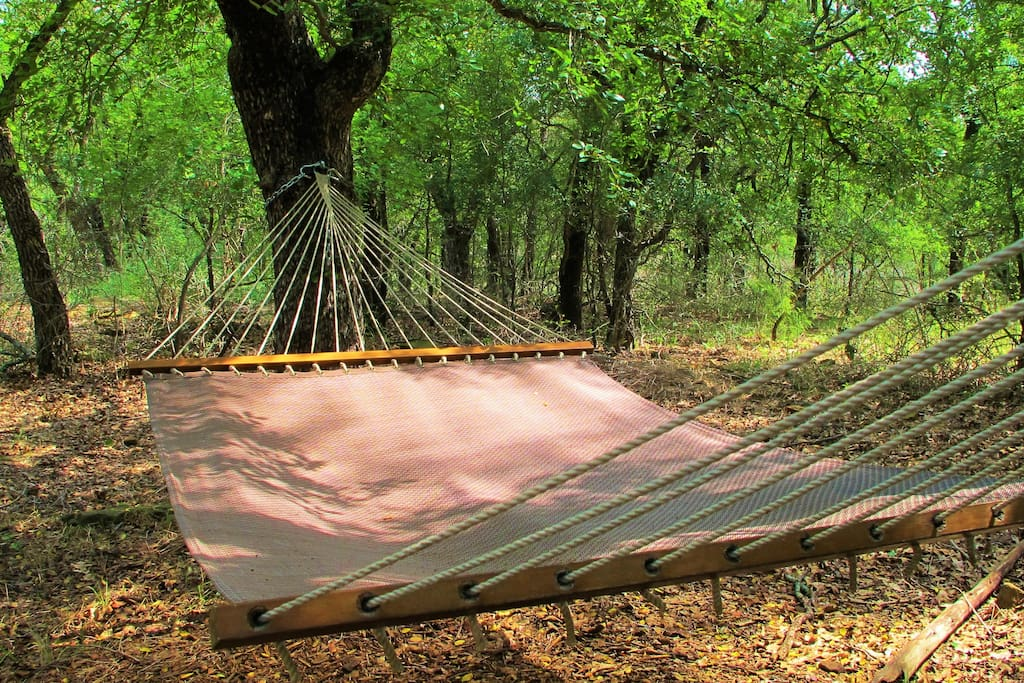 Private hammock to rest on