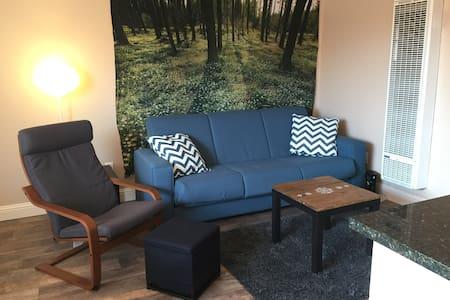 Midtown Updated Comfy 1 Bedroom Apartment - Reno - Apartment