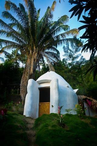 Dome 2 dans la jungle a 4km de Minca