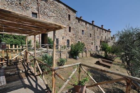 Castello Vittorio - Castello Vittorio 5 - Castello di Tocchi