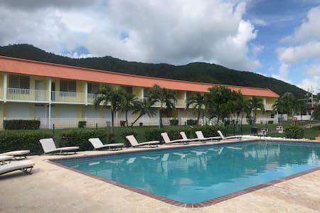 Caribbean Paradise ROOM 3