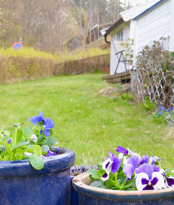 Hage med blomsterbed og plen
