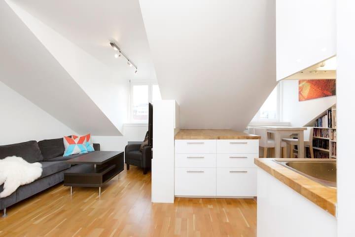 Aleksndrów Kujawski apartament na poddaszu - Aleksandrów Kujawski - Wohnung