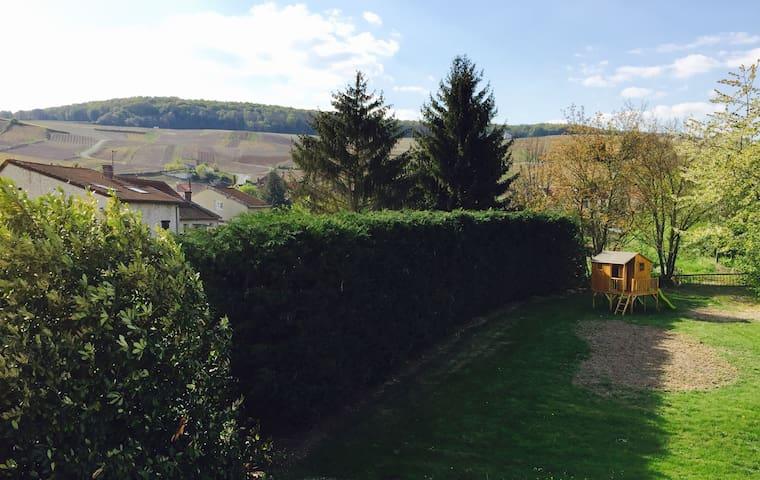 La Terrasse des Forges - Épernay - Apartment