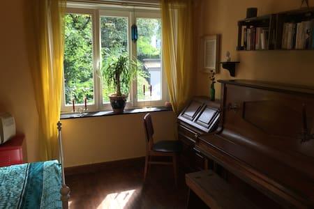 Kleine gemütliche Altbauwohnung im Herzen Aachens - Aken