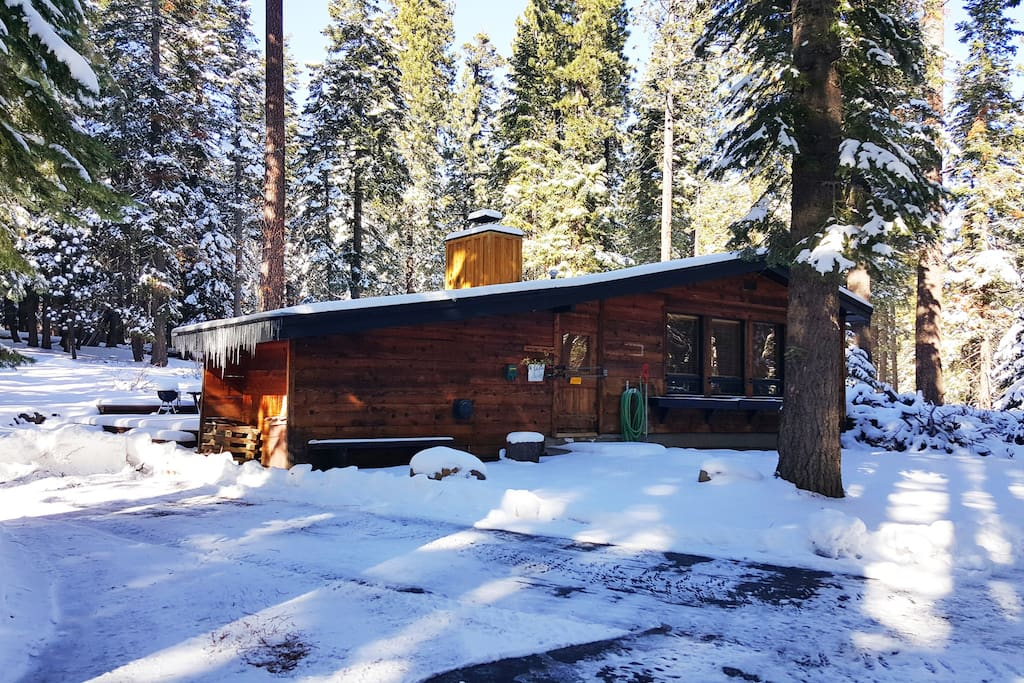 Quiet cabin in the woods. Cozy Time - Chalet in affitto a ...
