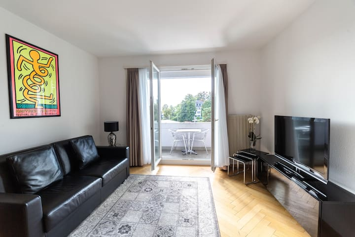 Bright 1 BR flat (Parkview 1)