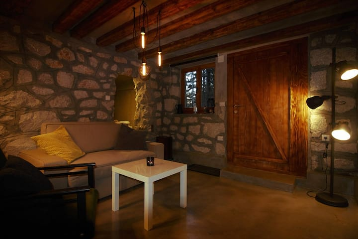 Designers Cave Apartment in National park Tara