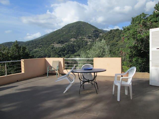 CORSE : Villa & studio indépendant. - San-Giuliano - Dům