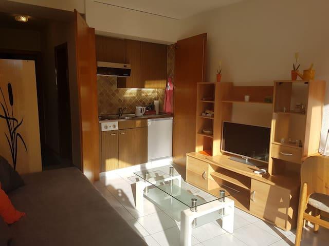 Kitchenette équipée accessible en ouvrant l'armoire
