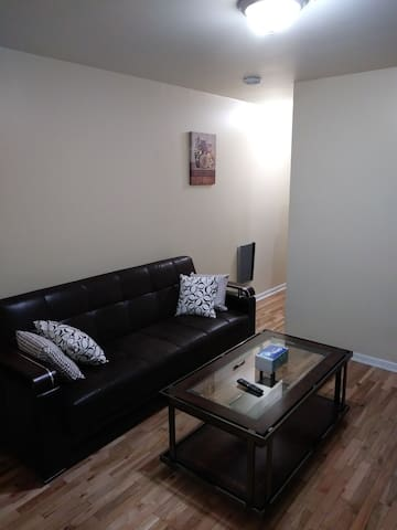 Philadelphia entire apartment 1bedroom & sofabed