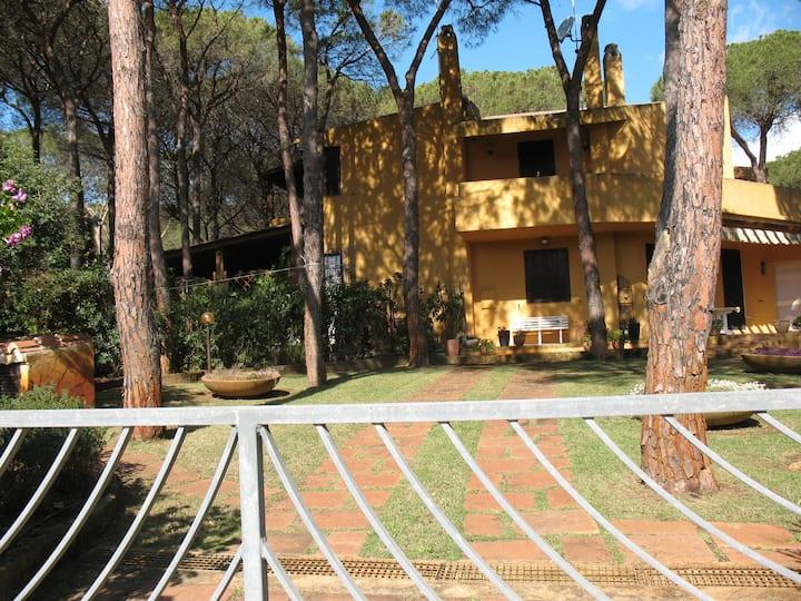 Villa in pineta vicina al mare