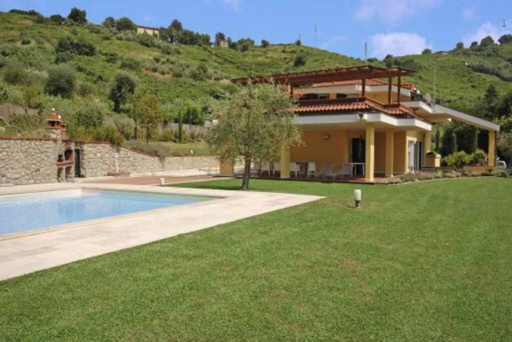 swimming pool, garden
