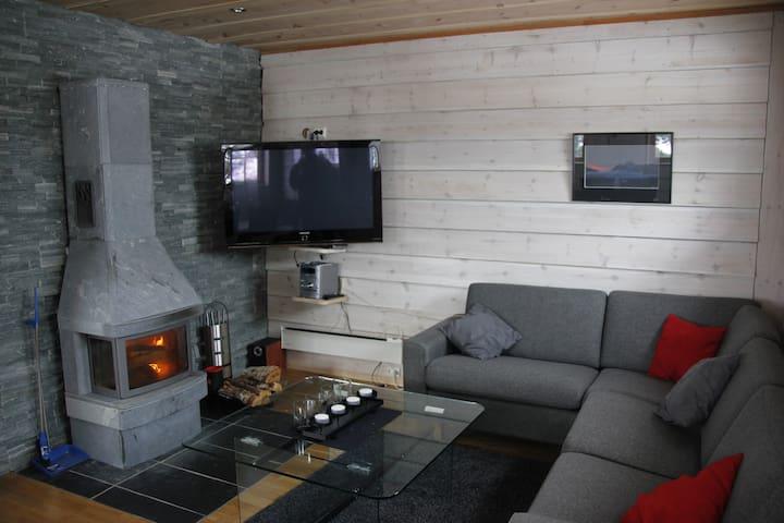 Moderne hytte med gode fasiliter - Stranda